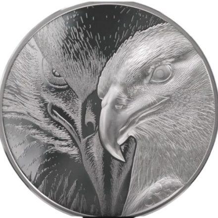 10 oz Majestic Eagle Silver Round (1)