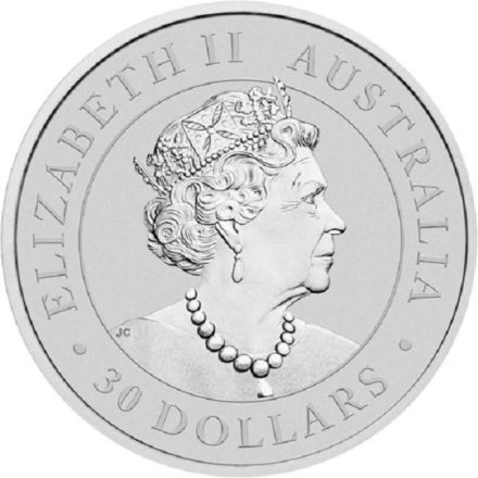 2021 1 Kilo Australian Silver Koala Coin Reverse