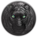 2021 Palau 1 Kilo Silver Black Panther Coin
