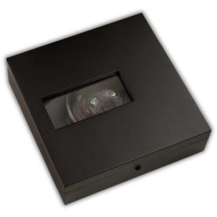 2021 Palau 1 Kilo Silver Black Panther Coin Box